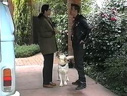 Dorothy Burke, Bouncer, Matt Robinson in Neighbours Episode 1320