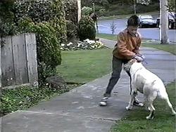 Toby Mangel, Bouncer in Neighbours Episode 1324