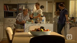 Doug Willis, Josh Willis, Brad Willis in Neighbours Episode 6876