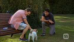 Will Dampier, Napoleon, Chris Pappas in Neighbours Episode 6897