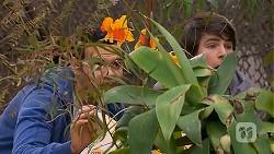 Nate Kinski, Chris Pappas in Neighbours Episode 7015