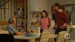 Doug Willis, Imogen Willis, Brad Willis in Neighbours Episode 7019