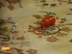 in Neighbours Episode 0781