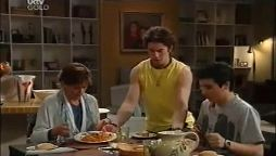 Susan Kennedy, Dylan Timmins, Stingray Timmins in Neighbours Episode 4661