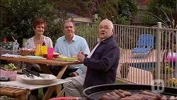 Susan Kennedy, Karl Kennedy, Harold Bishop in Neighbours Episode 7063