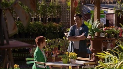 Susan Kennedy, Nate Kinski in Neighbours Episode 7064