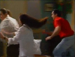 Toadie Rebecchi, Susan Kennedy, Karl Kennedy in Neighbours Episode 2970