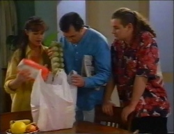 Susan Kennedy, Karl Kennedy, Toadie Rebecchi in Neighbours Episode 2970