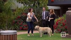 Naomi Canning, Paul Robinson, Terese Willis, Bouncer II in Neighbours Episode 7094