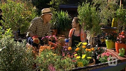 Dave (Fake Walter), Sonya Mitchell in Neighbours Episode 6672