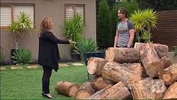 Terese Willis, Brad Willis in Neighbours Episode 7184