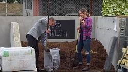 Paul Robinson, Amy Williams in Neighbours Episode 7199