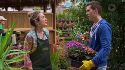 Sonya Rebecchi, Josh Willis in Neighbours Episode 7222