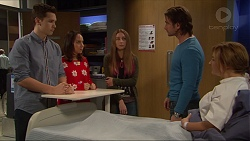 Josh Willis, Imogen Willis, Piper Willis, Brad Willis, Terese Willis in Neighbours Episode 7248
