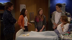 Brad Willis, Imogen Willis, Piper Willis, Josh Willis, Terese Willis in Neighbours Episode 7251