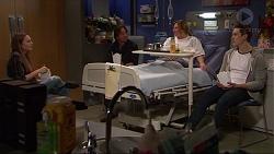 Piper Willis, Brad Willis, Terese Willis, Josh Willis in Neighbours Episode 7251
