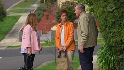 Terese Willis, Susan Kennedy, Doug Willis in Neighbours Episode 7266
