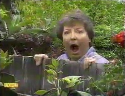 Edith Chubb in Neighbours Episode 0873