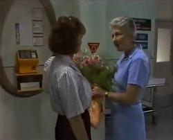 Pam Willis, Nurse Brabham in Neighbours Episode 2110