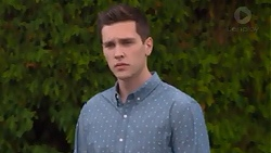 Josh Willis in Neighbours Episode 7275