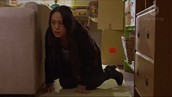 Michelle Kim in Neighbours Episode 7277