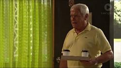 Lou Carpenter in Neighbours Episode 7304