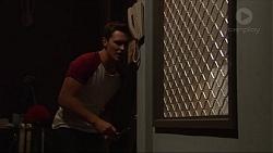 Josh Willis in Neighbours Episode 7312