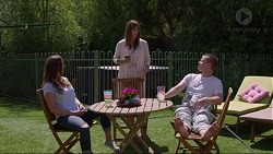 Amy Williams, Nina Williams, Daniel Robinson in Neighbours Episode 7342