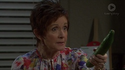 Susan Kennedy in Neighbours Episode 7343