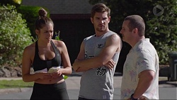Paige Novak, Ned Willis, Toadie Rebecchi in Neighbours Episode 7352