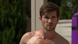 Ned Willis in Neighbours Episode 7368