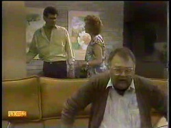 Des Clarke, Madge Bishop, Harold Bishop in Neighbours Episode 0866