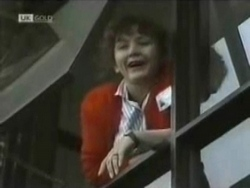Pam Willis in Neighbours Episode 1583