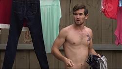 Ned Willis in Neighbours Episode 7371