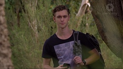 Brodie Chaswick in Neighbours Episode 7371