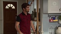 Ned Willis in Neighbours Episode 7382