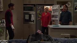 Ned Willis, Lauren Turner, Brad Willis in Neighbours Episode 7388