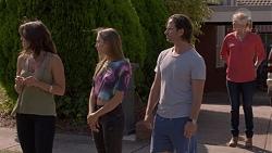 Paige Smith, Piper Willis, Brad Willis, Lauren Turner in Neighbours Episode 7388