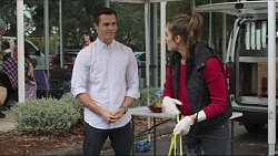 Jack Callahan, Amy Williams in Neighbours Episode 7413