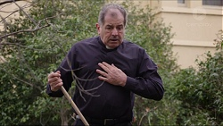 Father Vincent Guidotti in Neighbours Episode 7414