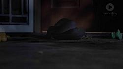 in Neighbours Episode 7423