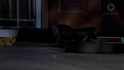 in Neighbours Episode 7424