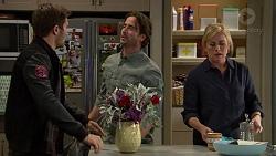Ned Willis, Brad Willis, Lauren Turner in Neighbours Episode 7433
