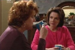 Liz Conway, Lyn Scully in Neighbours Episode 3992