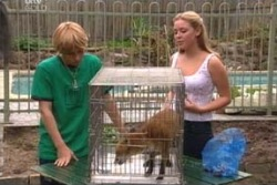 Boyd Hoyland, Roxy, Michelle Scully in Neighbours Episode 4048