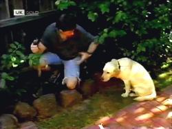 Joe Mangel, Bouncer in Neighbours Episode 1411