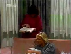 Pam Willis, Brad Willis in Neighbours Episode 2002
