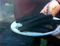 in Neighbours Episode 2005