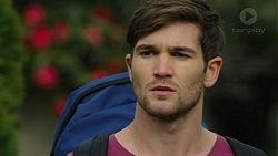 Ned Willis in Neighbours Episode 7470