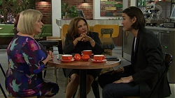 Sheila Canning, Terese Willis, Leo Tanaka in Neighbours Episode 7475